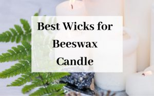 Best Wicks for Beeswax Candles