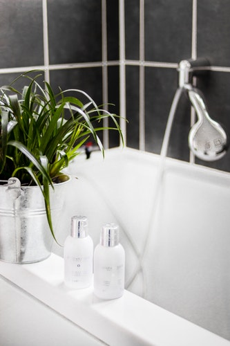 Why You Should Have Plants In Your Bathroom