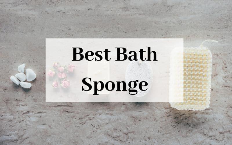 Best Bath Sponge